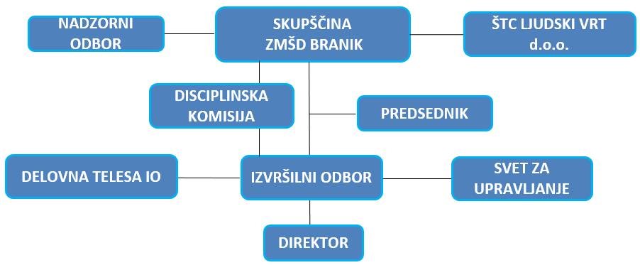 Obstoječa organizacijska struktura ZMŠD Branik